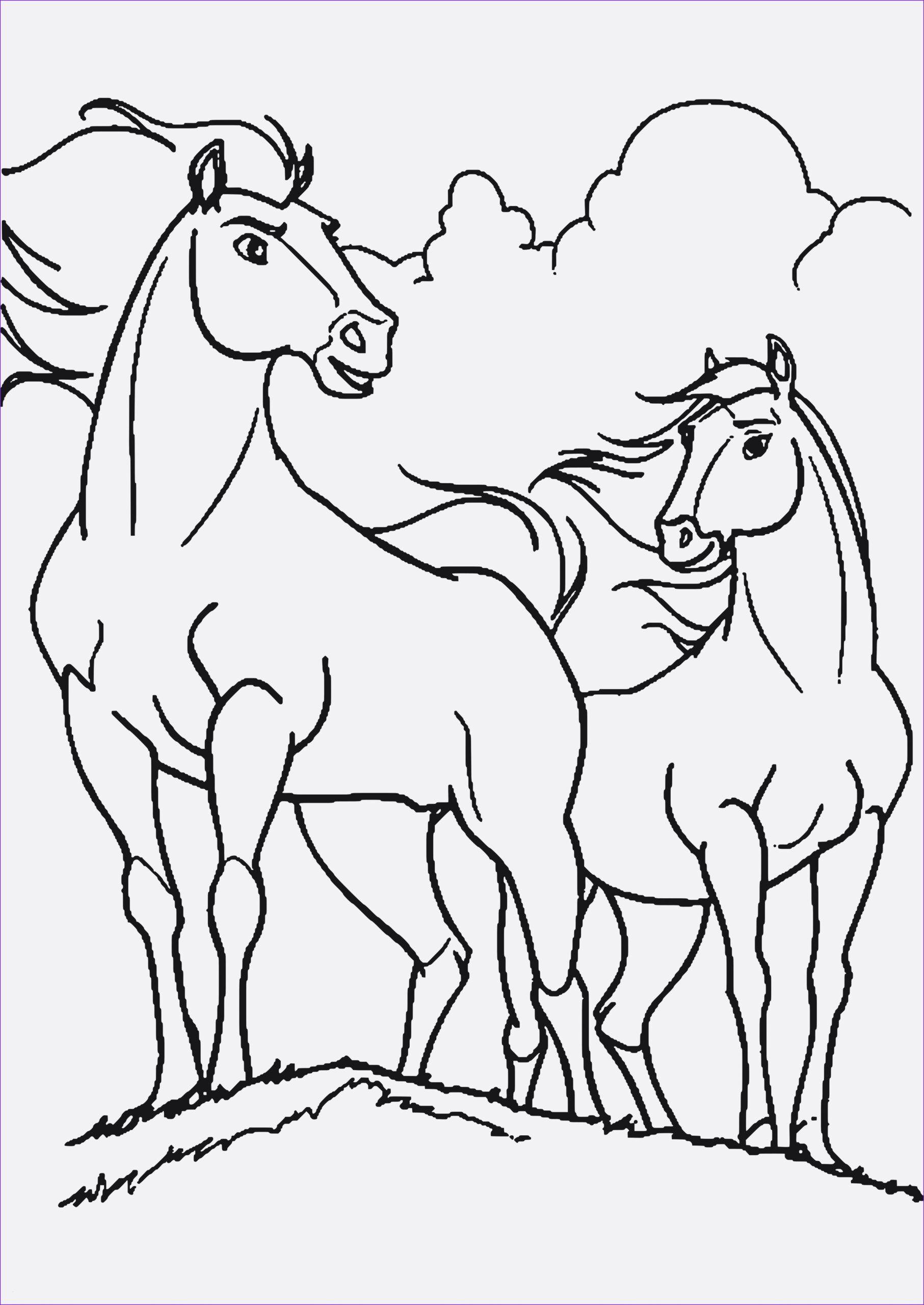10 Besser Malvorlage Indianer Idee 2020 Malvorlagen Pferde Malvorlagen Ausmalbilder
