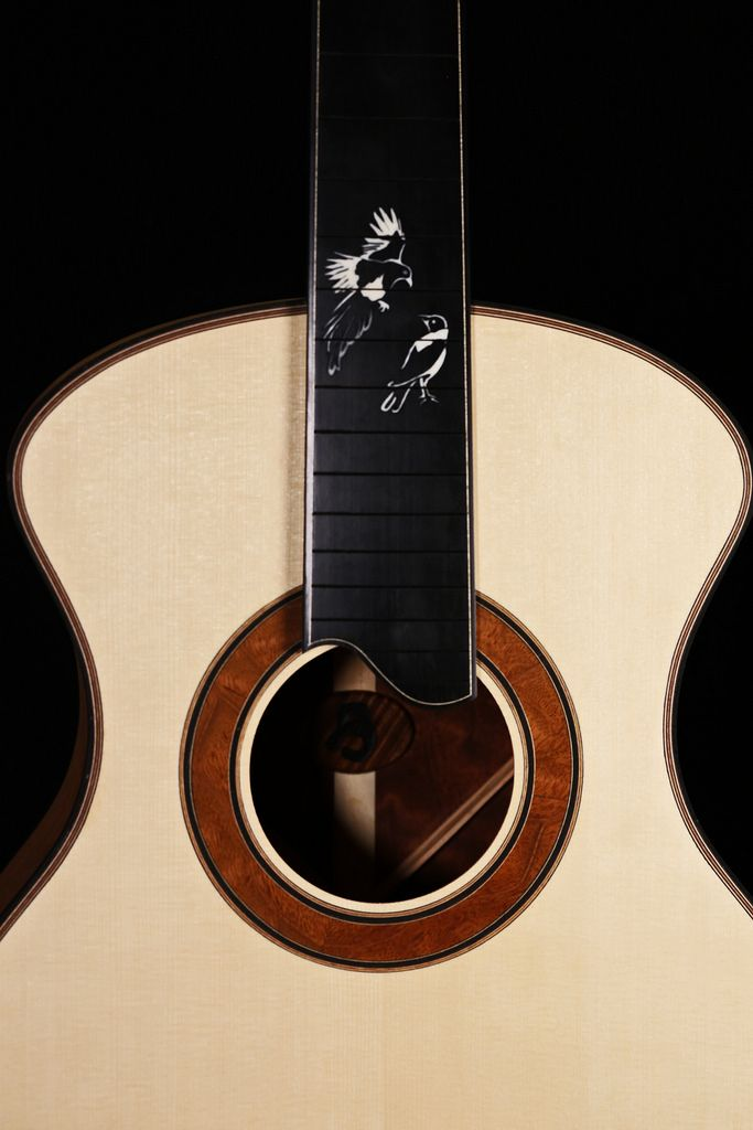 The Edwinson Hobbs Blackwood Rose Project Page 7 The Acoustic Guitar Forum Acoustic Guitar Acoustic Fender Acoustic Guitar