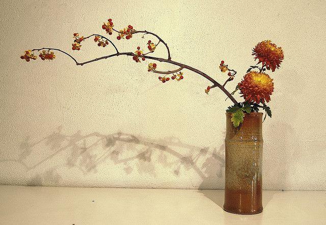 Ikebana 'Balance between two opposites' | Flickr: partage de photos!
