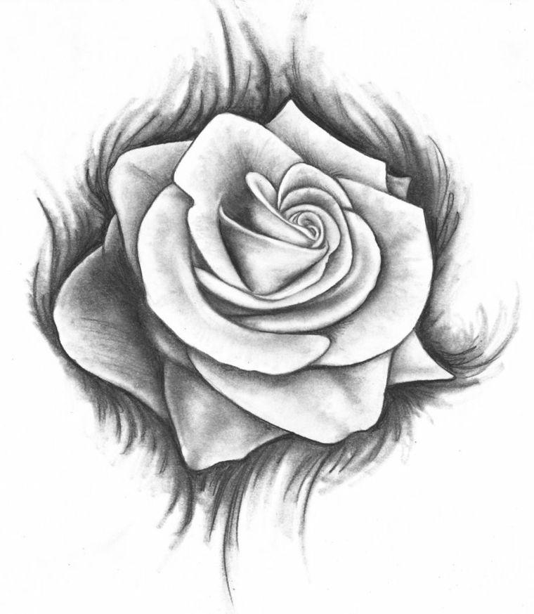 Disegni A Matita Rosa Grandi Dimensioni Bianco Nero Sfondo Piu Scuro