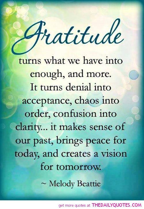 Image of: Attitude Gratitude The Daily Quotes Pinterest Gratitude The Daily Quotes Gratitude Pinterest Gratitude
