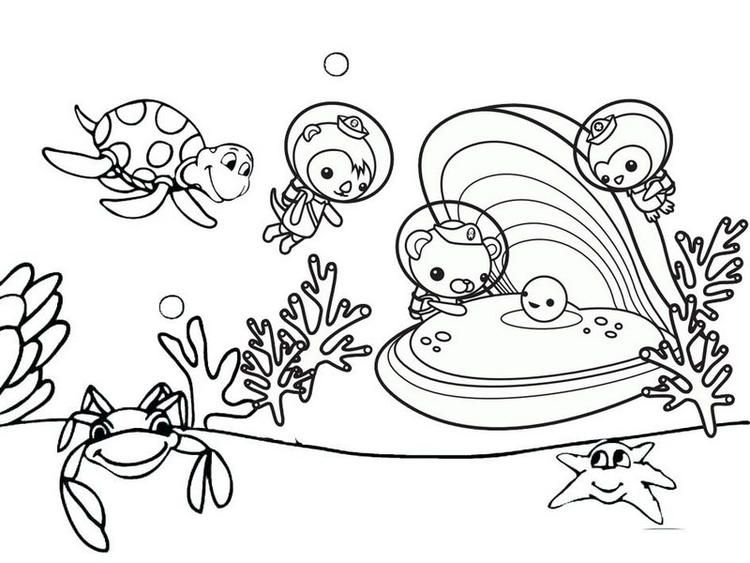Read Moreoctonauts Observing Oyster Coloring Pages Coloring