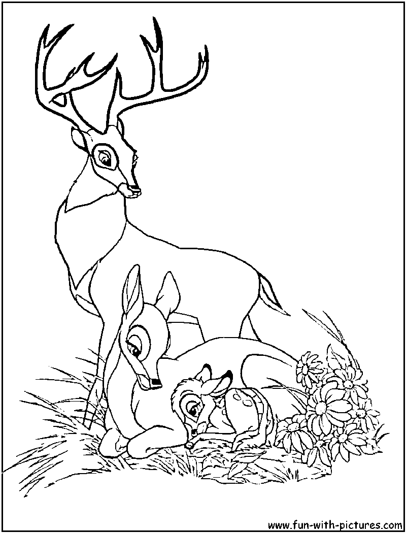 Disney Bambi Coloring Pages Bing Images✖️adult Coloring Pages