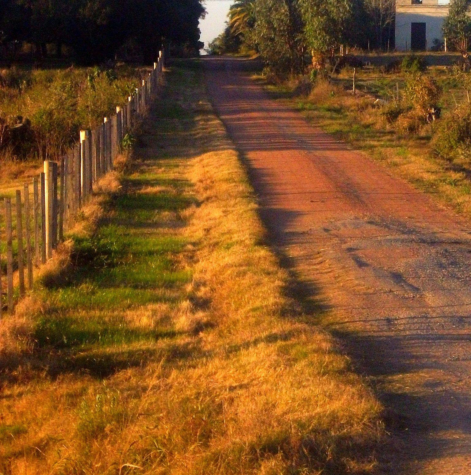 Uruguay Landscape In Sunset Uruguay Paisajes
