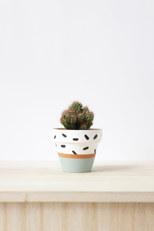 Hand Painted Terracotta Plant Pot With Drainage Hole Saucers Etsy In 2020 Terracotta Plant Pots Plant Pot Diy Painted Plant Pots