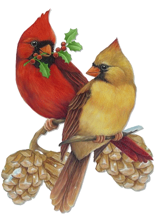 Christmas Cardinals Clipart.Christmas Male And Female Cardinals Clip Art Clip Art