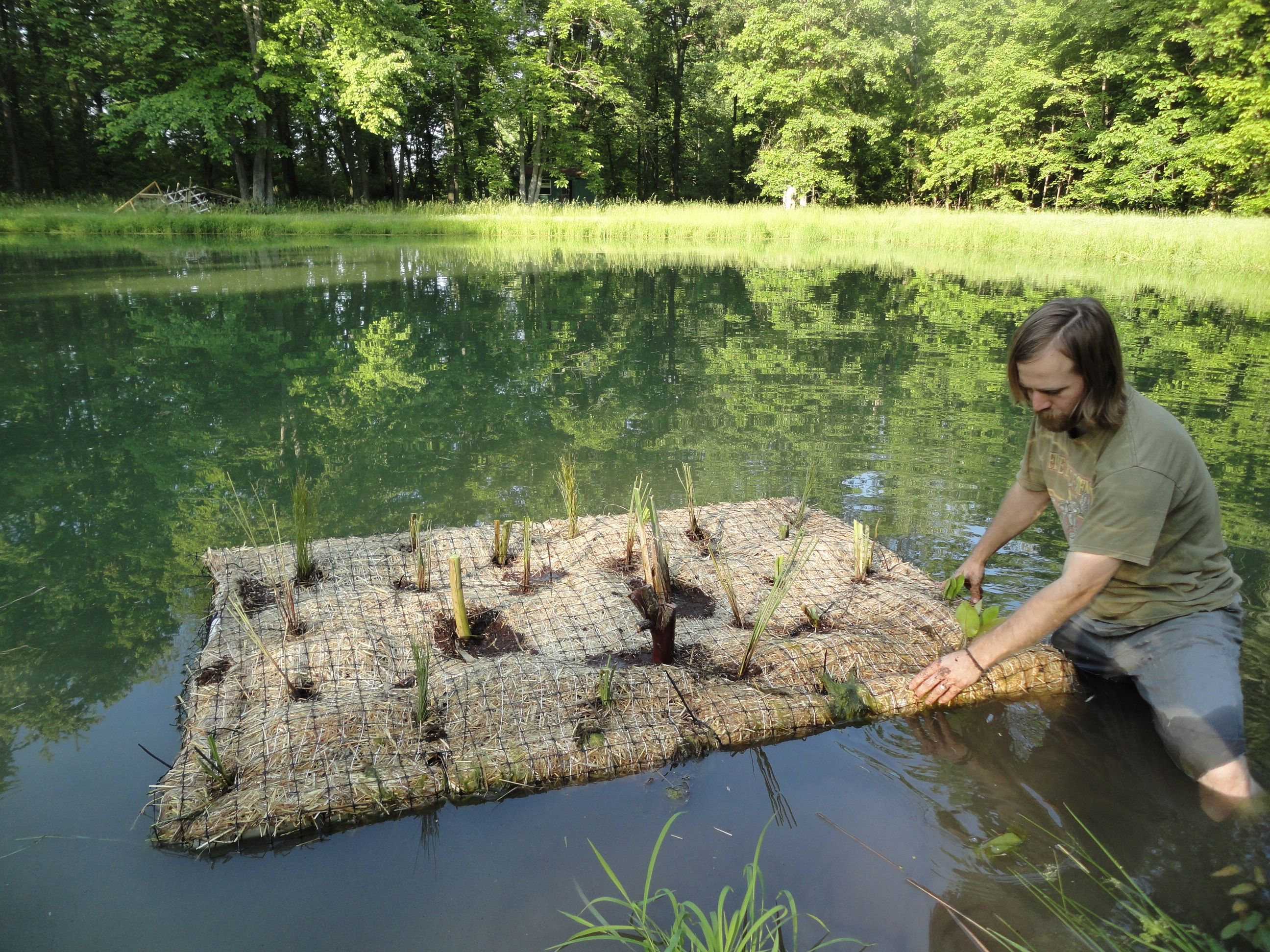 Floating plant islands for ponds for Water filtering plants for ponds