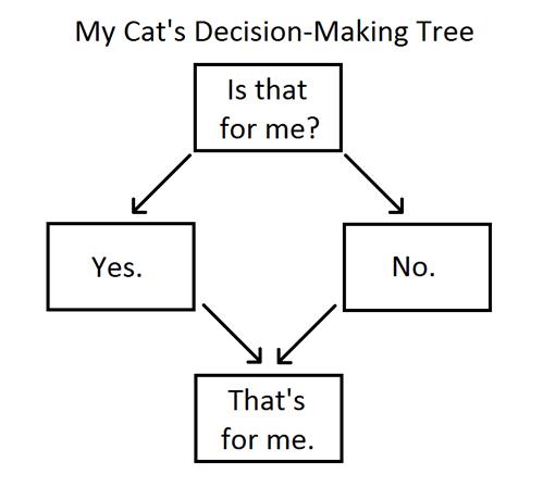 My Cat's Decision-Making Tree