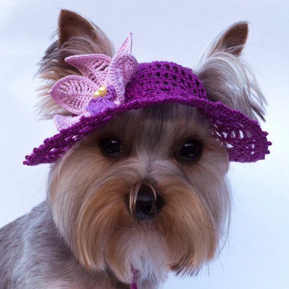 Sombrero para perro Orquídea 42d601886b4