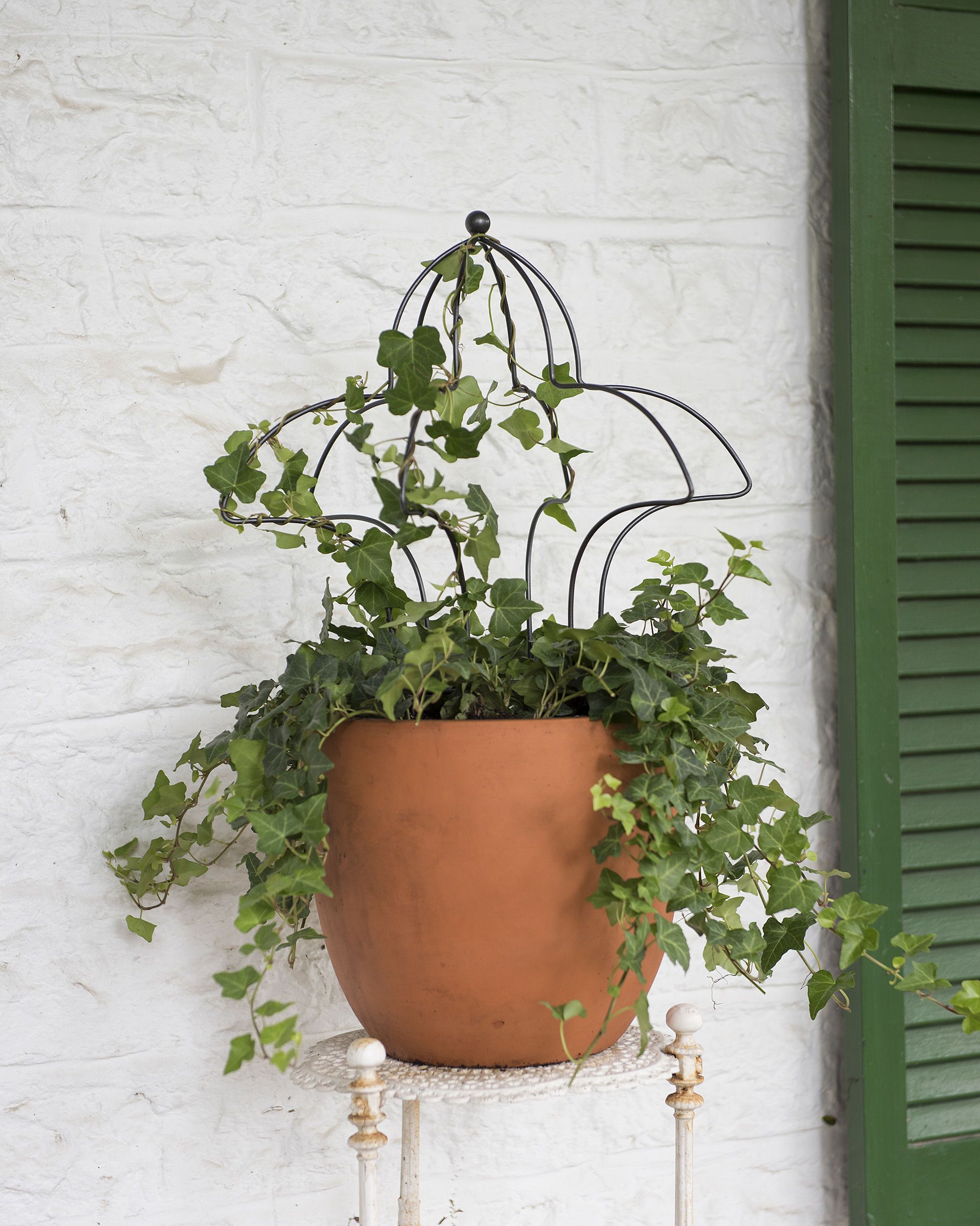 Topiary Ball Frames - Sphere Topiary Frame - Wire Topiary Forms ...