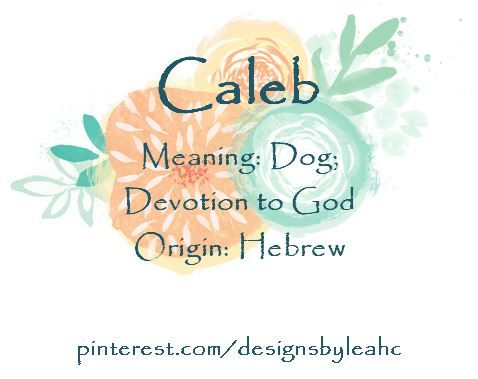 hebrew baby names and meanings pdf