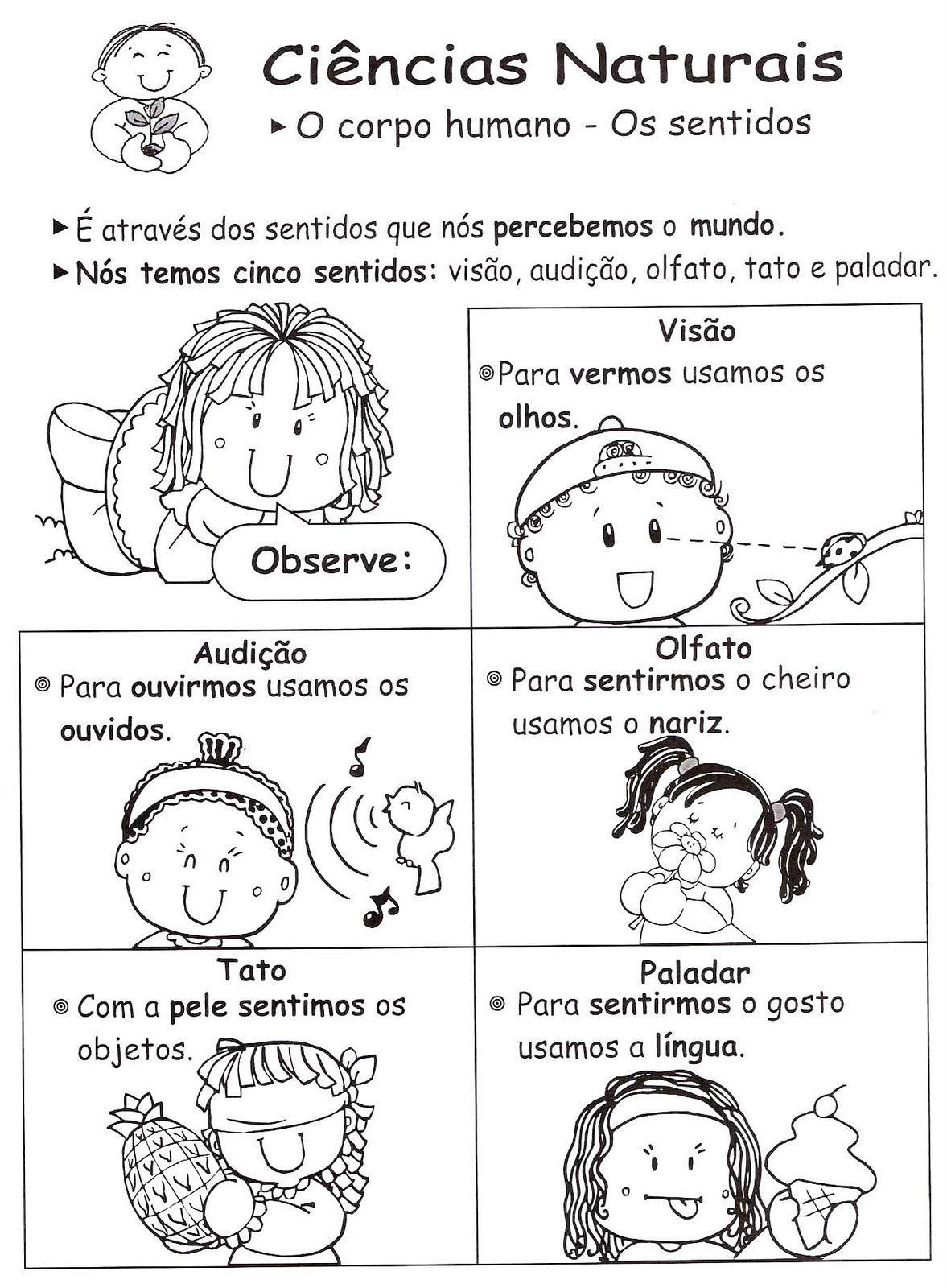 Pin By Deidre Rodrigues On Portuguese Class