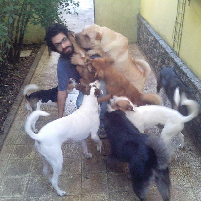 """Publicado por Fausto Fernandes(Creche e Hotel Ossos do Oficio) A maioria das pessoas sonha com um cão extremamente obediente, que """"entenda """"todos os"""
