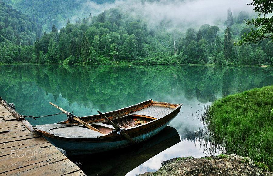 #nature Green by muhammedalibyz