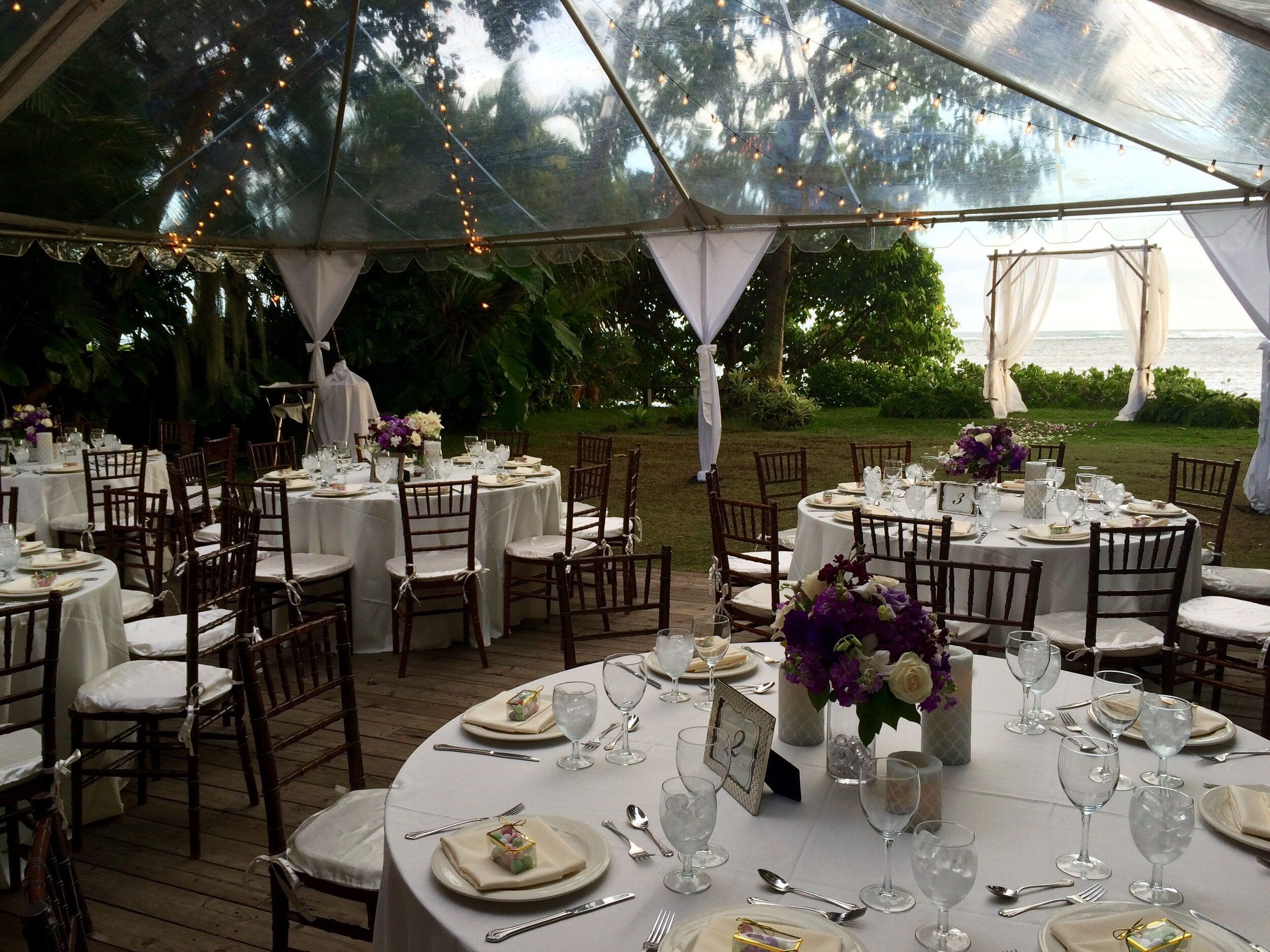Intimate Garden Wedding Reception With Clear Top Tent In 2020 Small Garden Wedding Small Outdoor Wedding Garden Wedding Reception