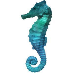 Seahorse Png Polyvore Seahorse Tattoo Mermaid Art Mermaid