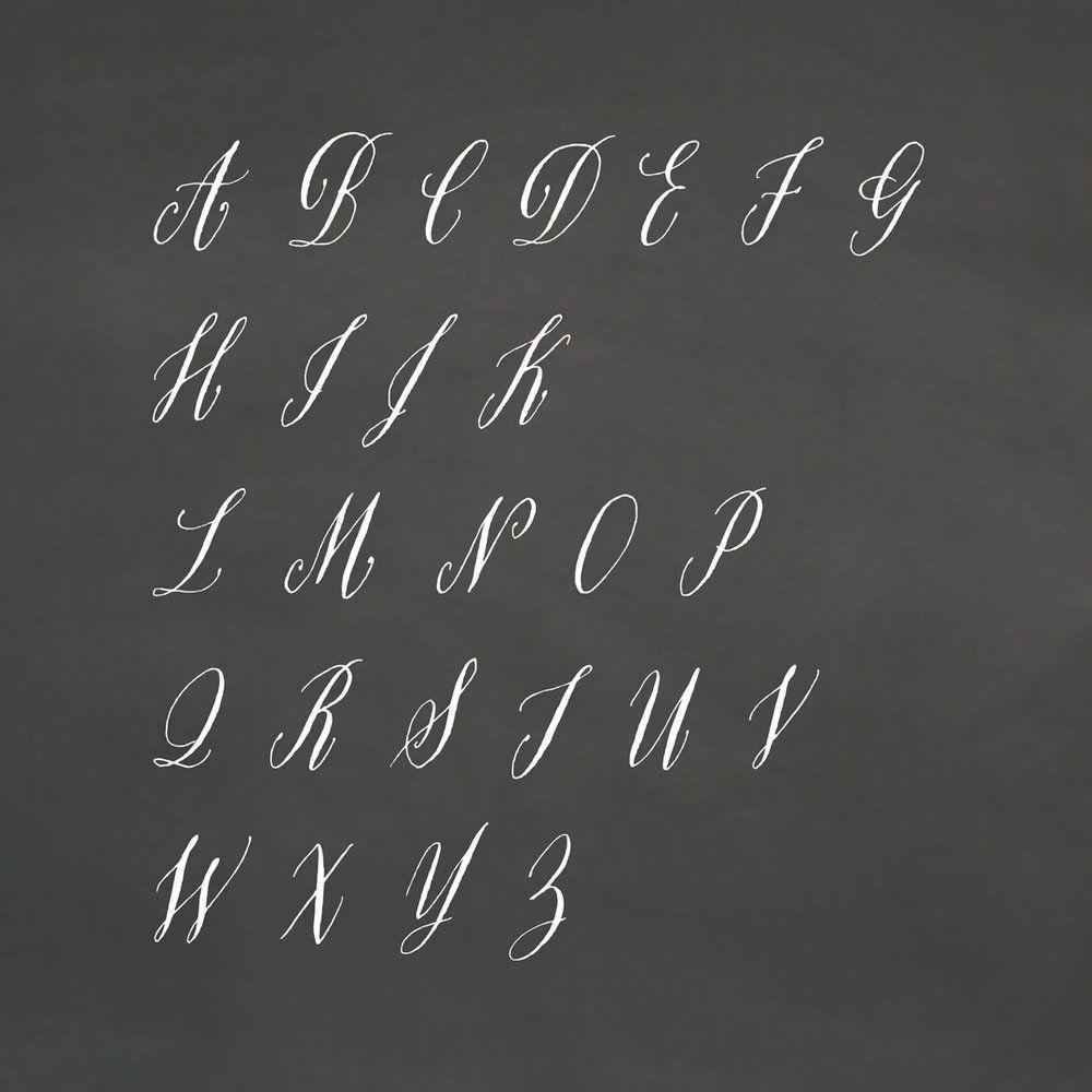 RARE BIRD SPECIMEN I A-Z   Beautiful fonts, Lettering ...