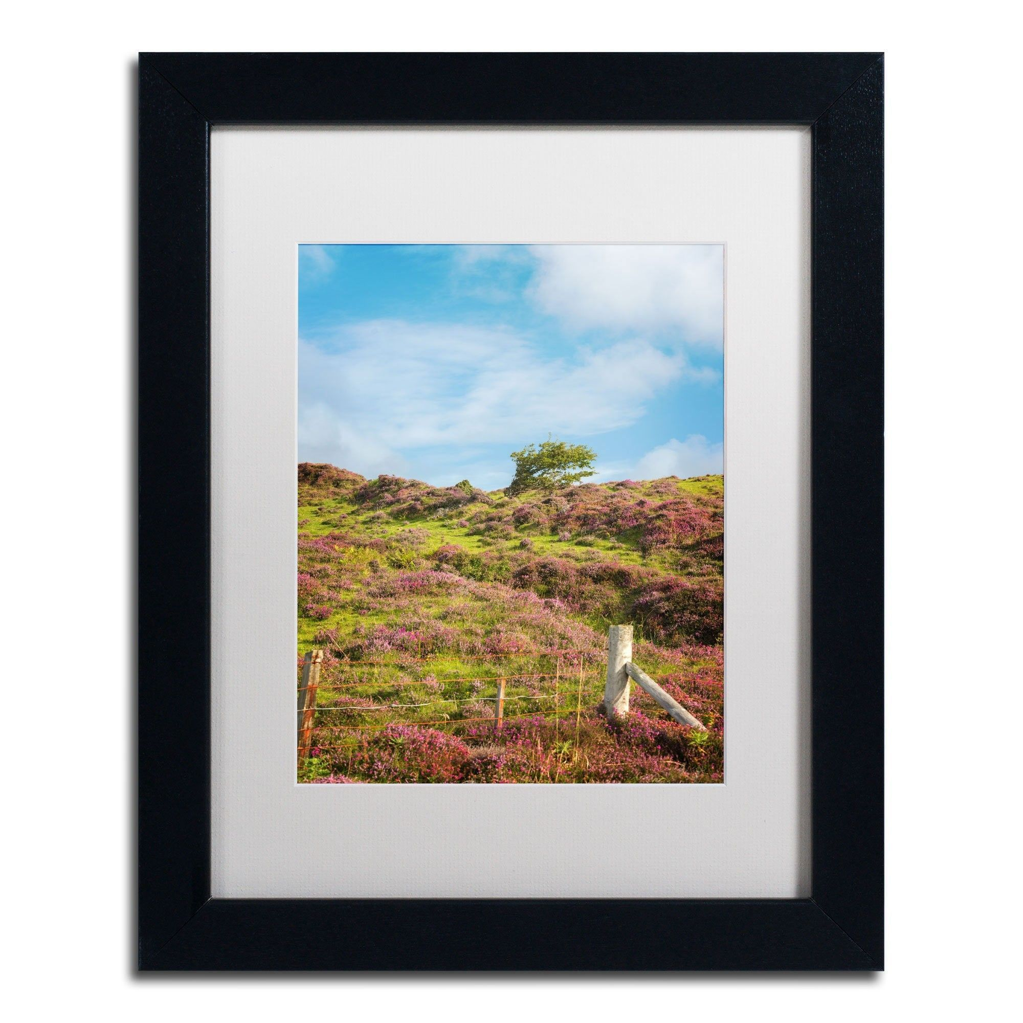Moorland's Color by Philippe Sainte-Laudy Matted Framed Photographic Print