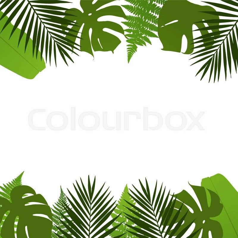 Stock Vector Of Tropical Leaves Background With Palm Fern Monstera And Banana Leaves Vector