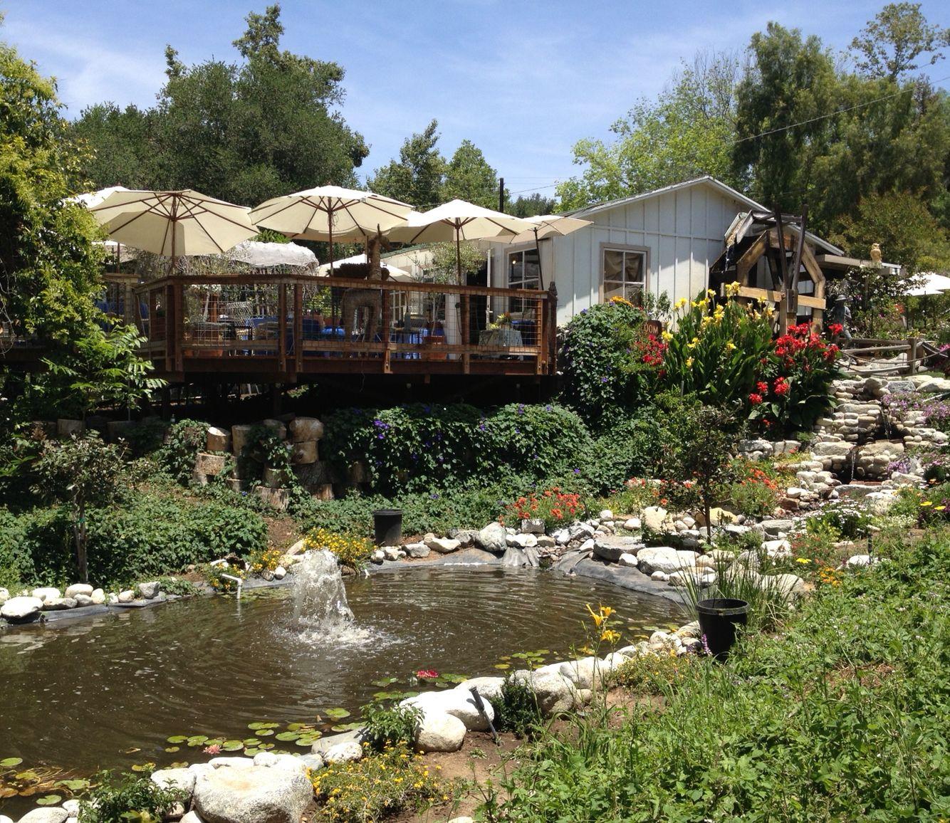 760556d00c7b2b5446f7b4e8c7cabbc5 - Myrtle Creek Botanical Gardens & Nursery Fallbrook Ca