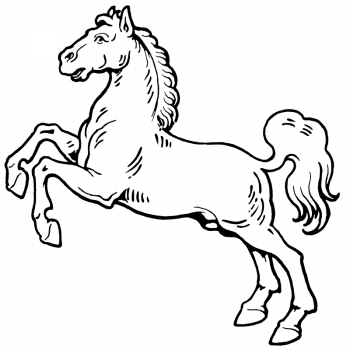 Coloriage De Cheval Blanc Coloriage Cheval Animaux De La Ferme