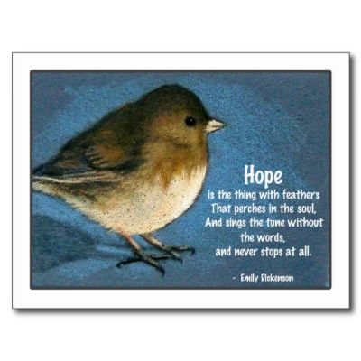 Junco Bird With Saying Postcard Zazzle Com Hope Is The Thing With Feathers Sayings Bird Quotes