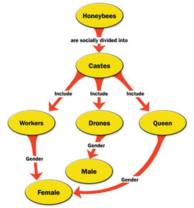 Pin by Patty Okawa on mind maps Pinterest Microsoft word and - flowchart templates for word