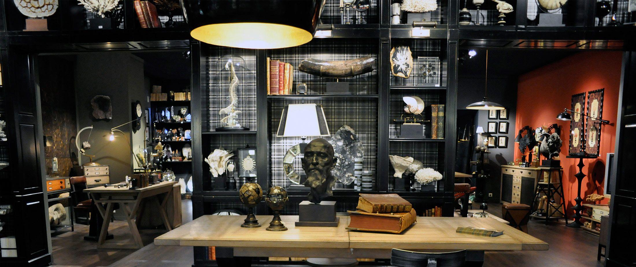 objet de curiosit cabinets des curiosit s et objets insolites pinterest objet de. Black Bedroom Furniture Sets. Home Design Ideas