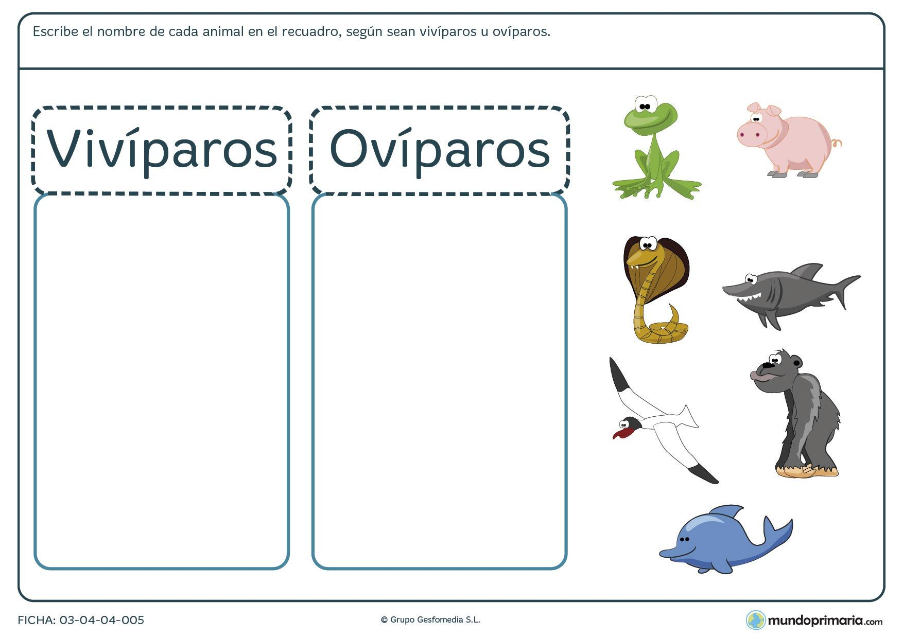Resultado De Imagen De Animales Viviparos Y Oviparos Para Colorear