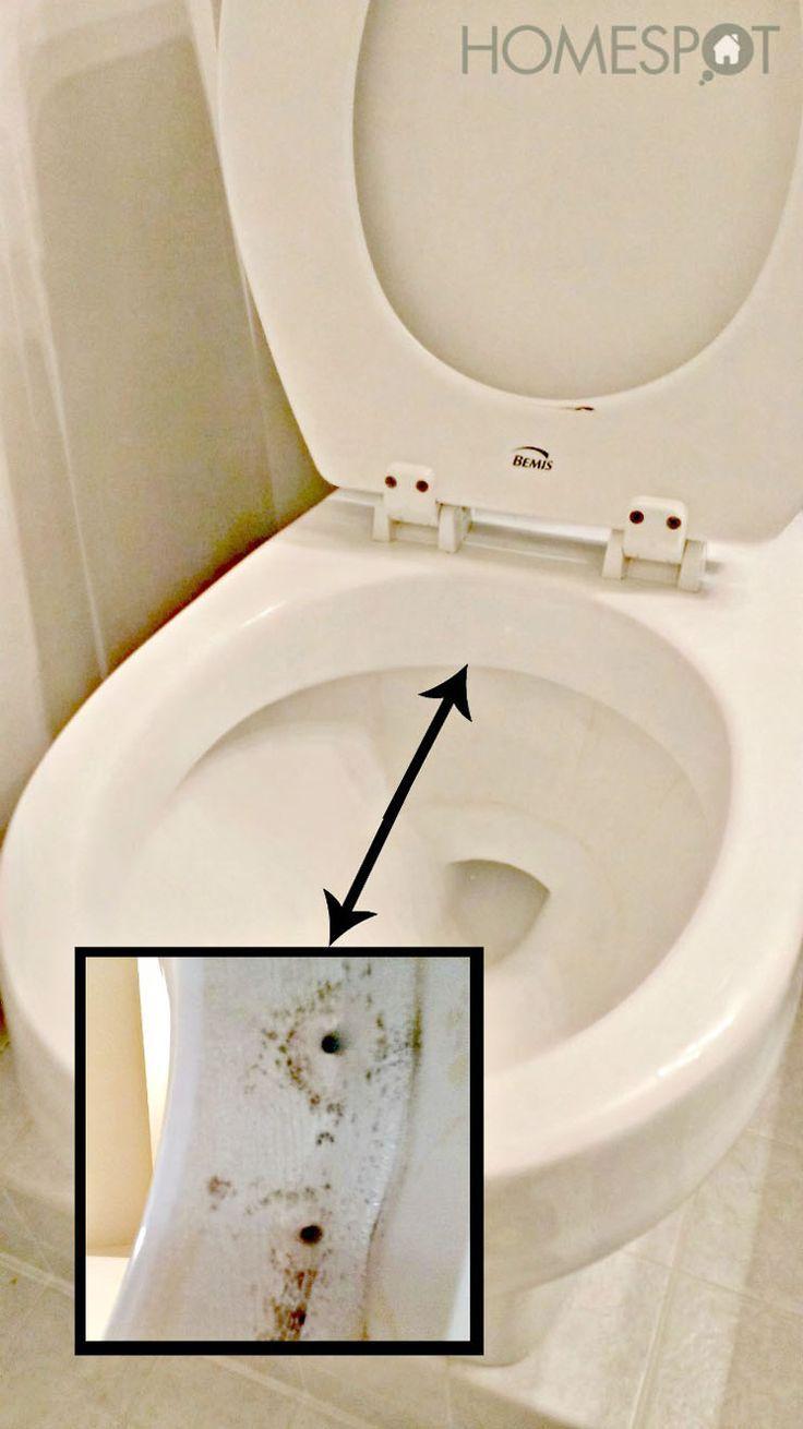 Toilette reinigen – Hausmittel gegen Kalk und Urinstein