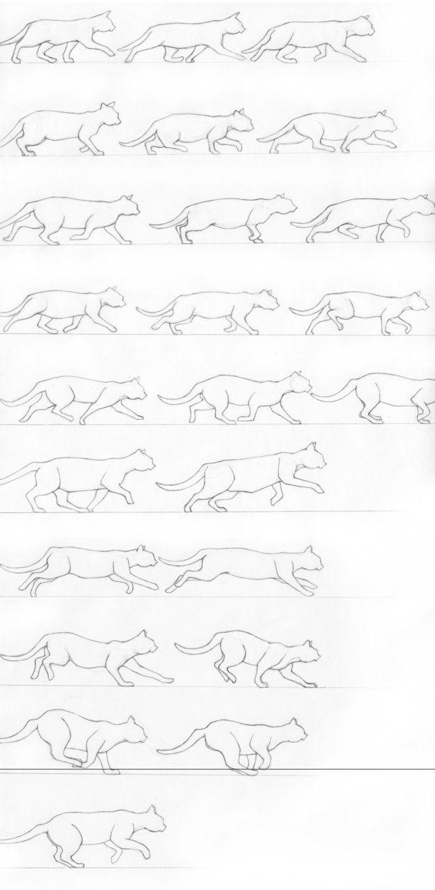 Cat starting a gallop by ~RenegadeStudios on deviantART