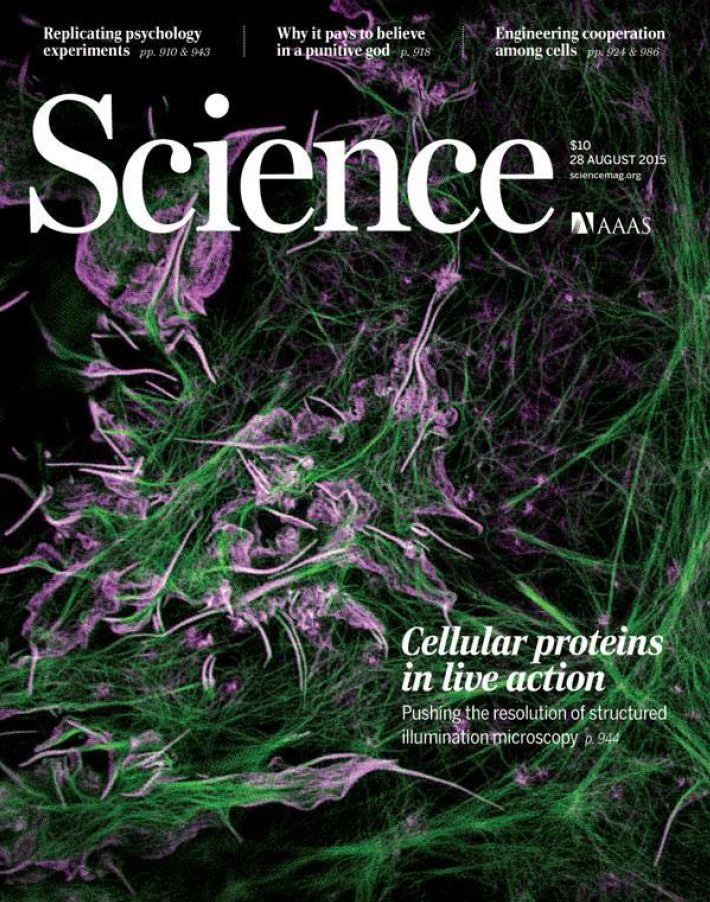 Science Magazine Download August 28, 2015   #DownloadFreeeBooks Download Free eBooks Page: http://tvseriesfullepisodes.com/index.php/2015/10/03/science-magazine-download-august-28-2015-download-free-ebooks/