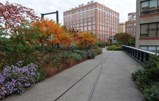 Highline Piet Oudolf Landscape Design Garden Landscape Design Garden Design