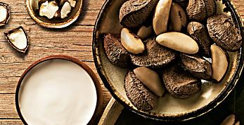 O óleo de castanha estimula a produção de proteínas da pele. Descubra.