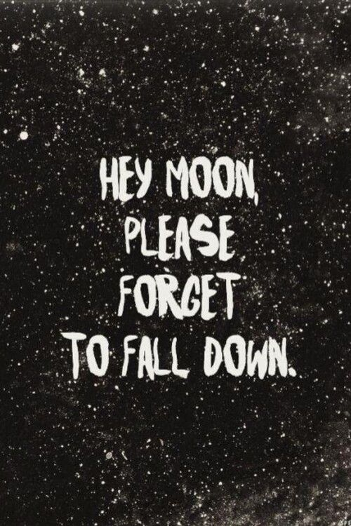 Northern Downpour Panic At The Disco Audiophile Pinterest