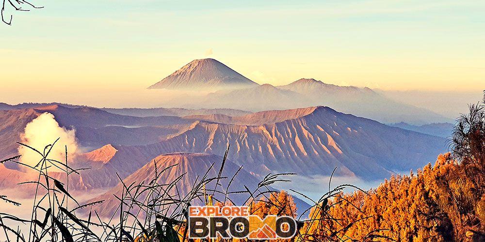 Open Trip Bromo Midnight Setiap Hari Dari Batu Malang Dan
