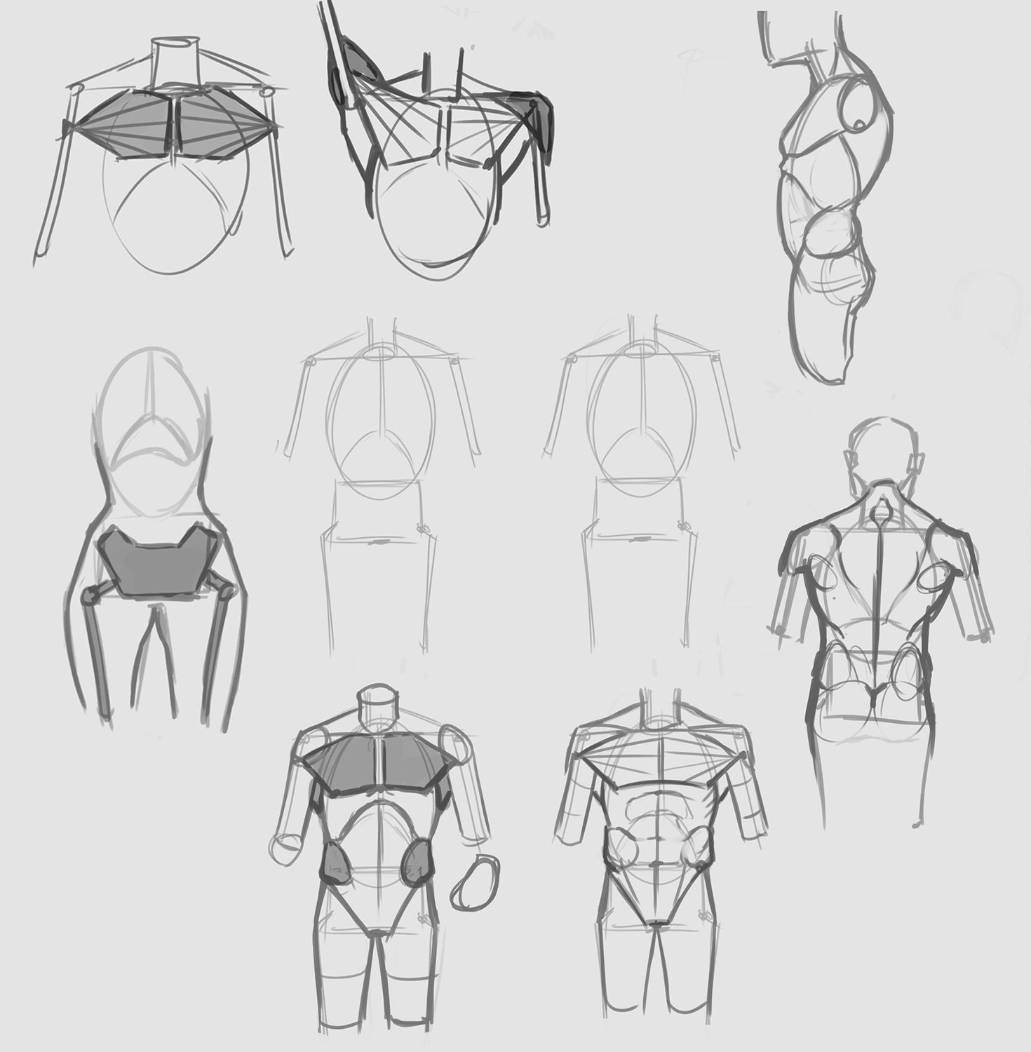 Simplified_Anatomy_Torso.jpg (1470×1500) | Anatomy | Pinterest ...
