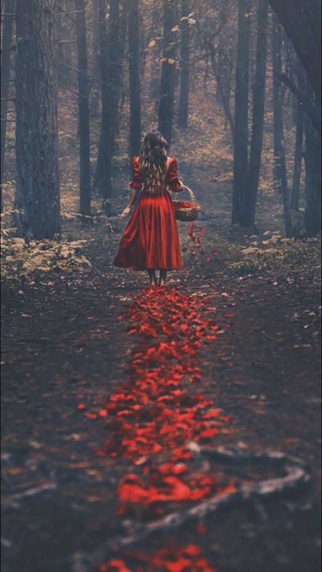 A Woman Dropping Rose Petals In The Forest Woman Girl