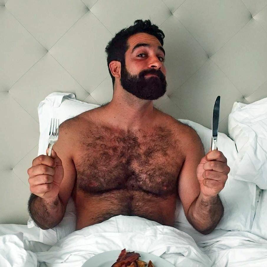 Bear chubby miscelaneous