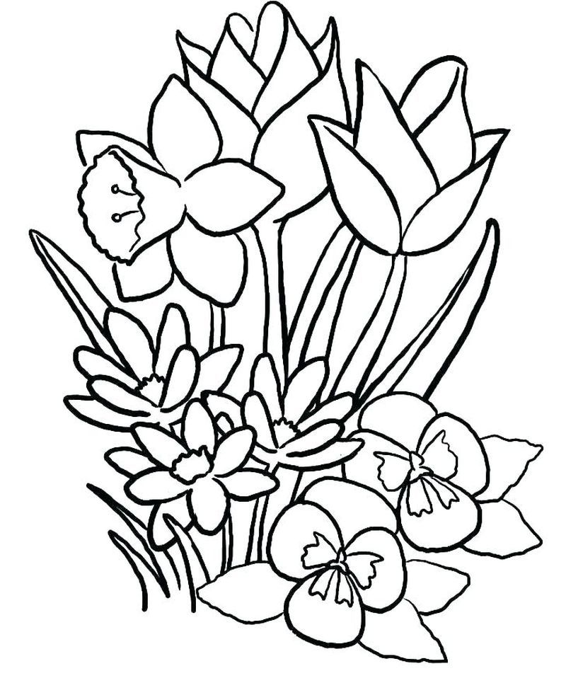 Gratis Ausmalbilder Blumen Malvorlagen Blumen Malvorlagen Zum Ausdrucken Malvorlagen Fur Kinder