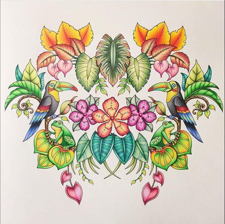 magical jungle johanna basford inspiration coloring books