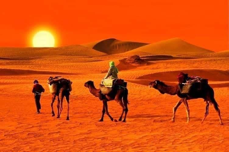 Visitalgeria On Instagram أجمل غروب شروق شمس في العالم الأسكرام بجبال الهقار في تمنراست هنا تغرب وتشرق الشمس في سكون Tourism Algeria Explore