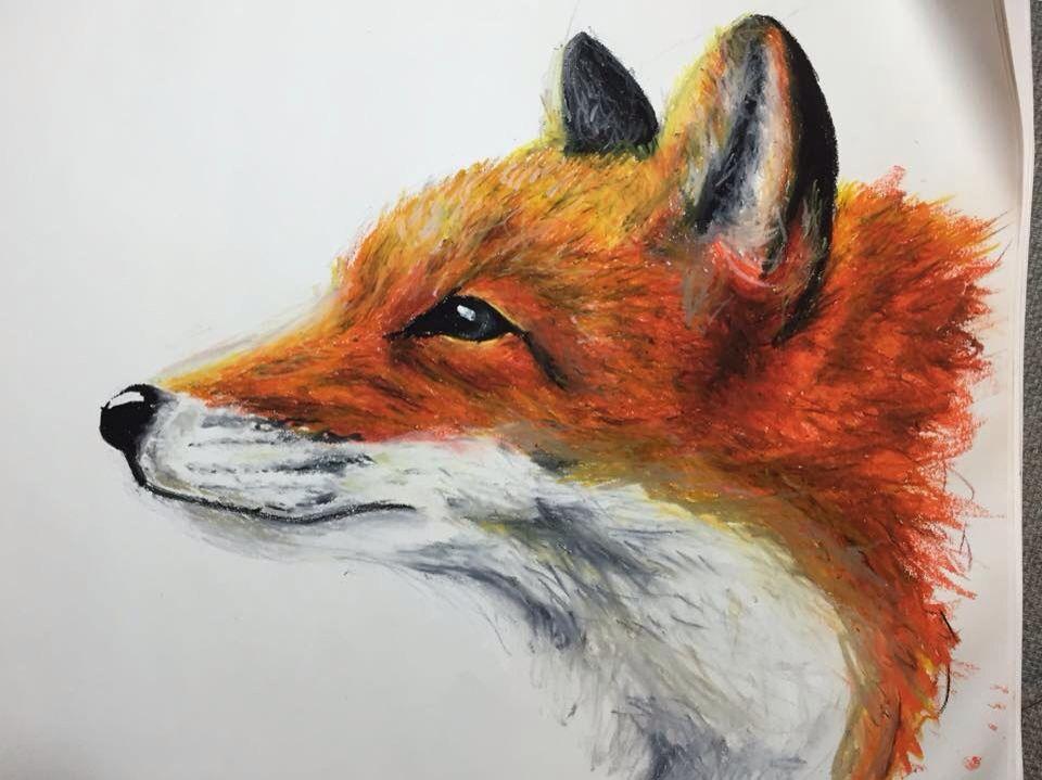 oil pastels fox drawing