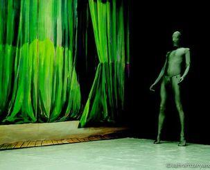 "Vahram Zaryan, performance Nina Childress ""Rideau vert"""