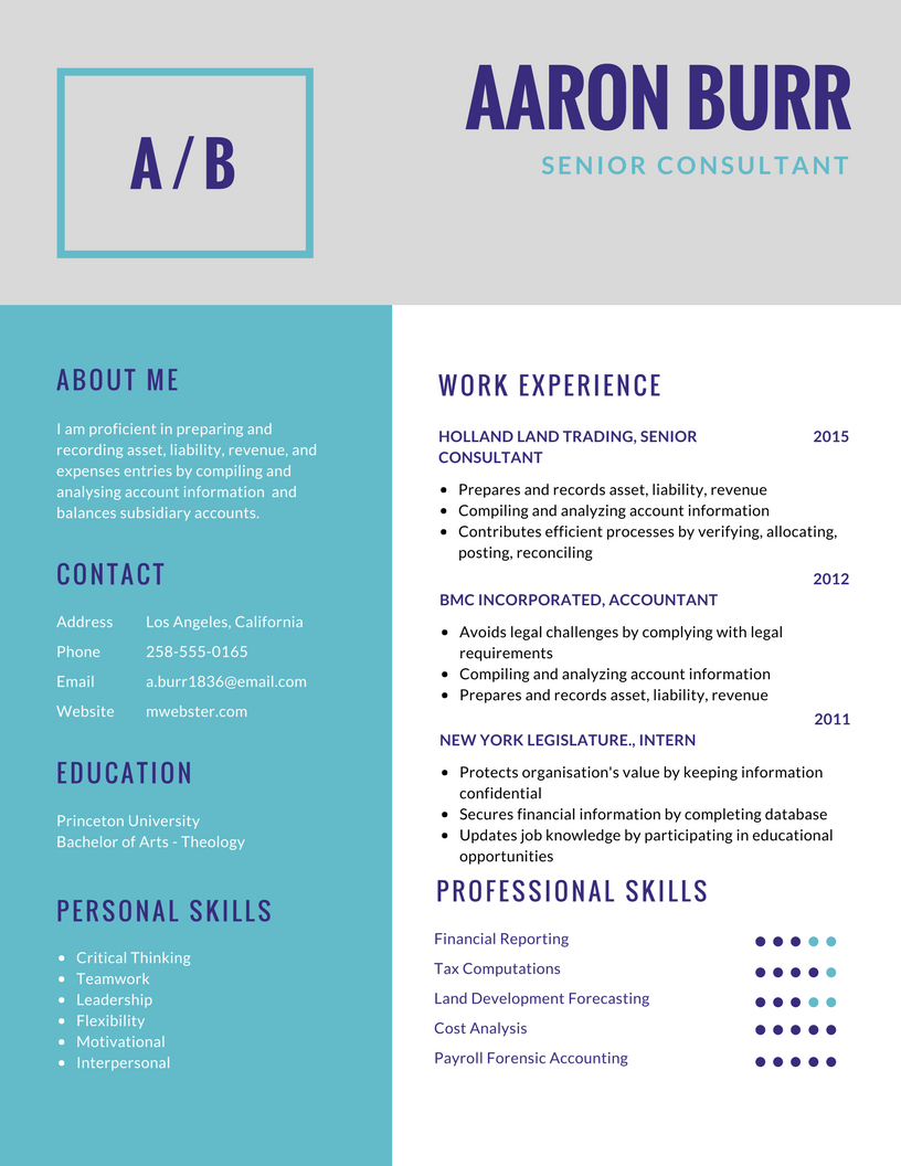 Resume Professional Resume Services The Resume Creation Package  Professional Resume