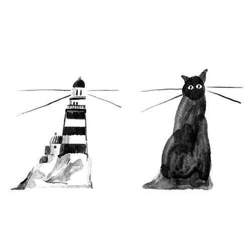 Illustrator namsee