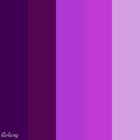 Different shades of purple purple but most of my for Shades of dark purple
