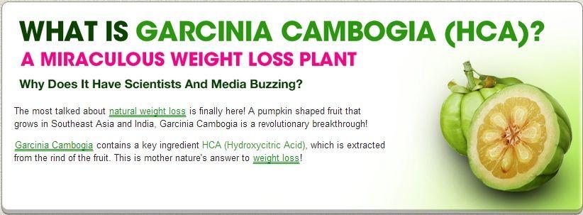 Weight loss vacation image 7