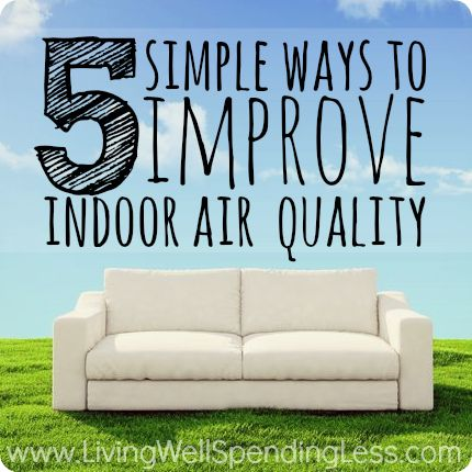 5 Simple Ways to Improve Indoor Air Quality | Asthma & Allergy Relief