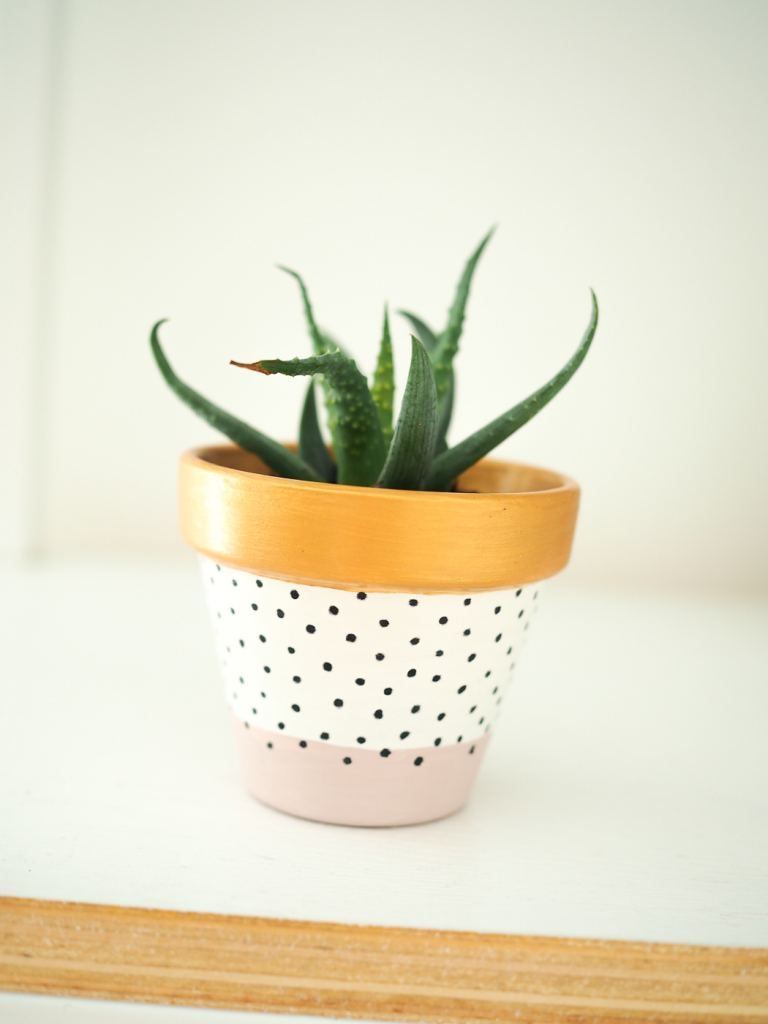 Painted Plant Pot diy Tutorial is part of Plant pot diy, Painted pots diy, Painted plant pots, Plant pot design, Painted flower pots, Diy pots - Today's post is another DIY post  I am such a succulent addict and when I was in Amsterdam picked up these